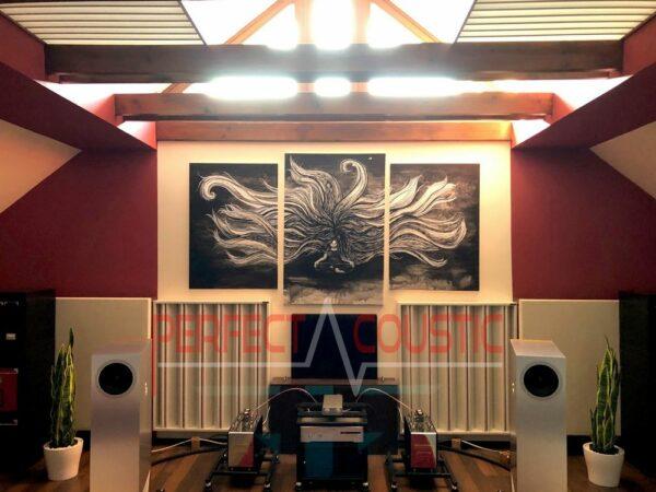 Säulendiffusor im HiFi-Raum..akustikbilder