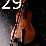 künstlerischer Akustik-Panel-Bass