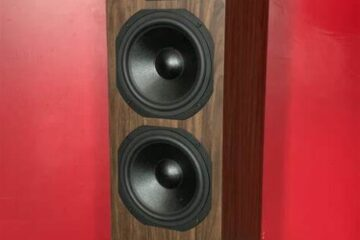 dynavoice-classic-cl-28-speaker-main-pic-460x460